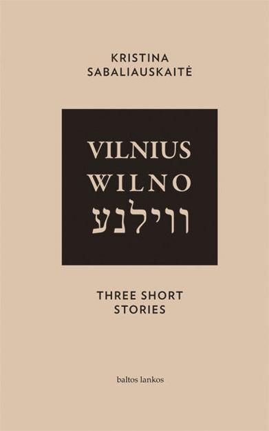 Vilnius. Wilno. Vilna. Three Short Stories paveikslėlis
