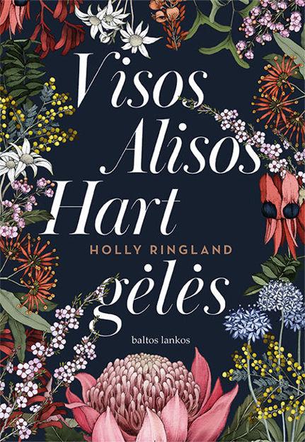 Visos Alisos Hart gėlės paveikslėlis