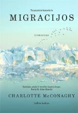 Migracijos paveikslėlis